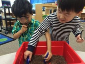 Observing Soil