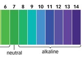 What is a Alkali?