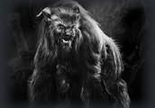 The Ozark Howler