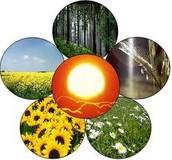 Vormen van bi-energie