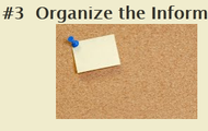 Organize the Information