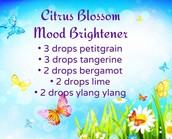 Spring diffuser blend 3 - Awesome for everyone!