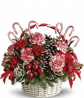 CandyCane and Holly Arrangement
