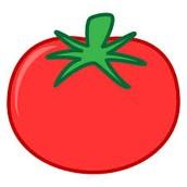 Lavo los tomates