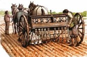 The seed drill