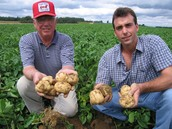 what kind of jobs and training there are in the potato industries