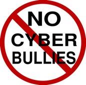 cyber bulling rule: