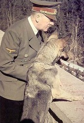 Hitler's Blondi and His Other Dogs