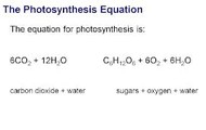 The equation of photosynthesis