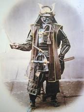 About the Samurai