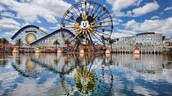 One of our locations is right by Disney!