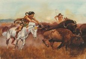 Animals The Sioux First raised and used