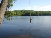 Swimming At Lake