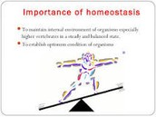Things to know about Homeostasis