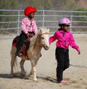 The Power of Your Dreams with Horses - Horses Can Change Your Life