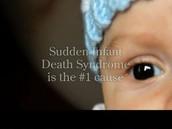 SIDS statistics
