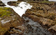 Tide Pools PV