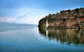 Lake Orhid