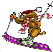The Michigan Snowsports Industries Association (MSIA)