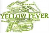 Tagxedo of yellow fever