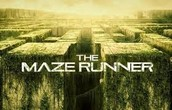 SUMMARY OF THE MAZE RUNNER