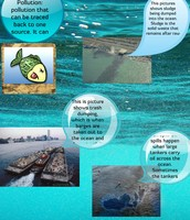 point source pollution kills life such as fish