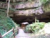 organ cave