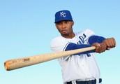 ~Baseball Career~