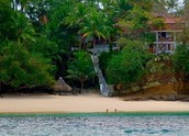 Pear Island
