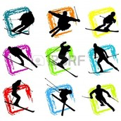 They compete in Alpine Skiing and Cross-Country Skiing!