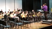 Lang MS Band