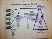 Information Processing Model page 43