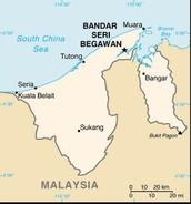 Political Map of Brunei