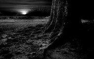 """The cliff in being backed by """"continent""""; It looked as if a night of dark """"intent"""""""