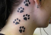 if you looking to get a tattoo well than come here nd we will help find whats best for you