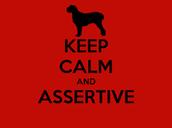 Assertive: