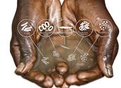 Health & Sanitation