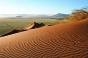 Kalahari Desert!
