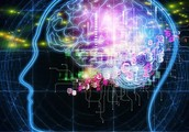 Brain Injury Attorney