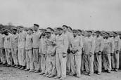 Prisoner lined up