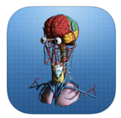 The Brain 3D® Augmented Reality App