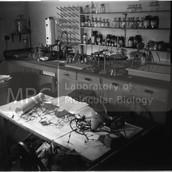 Franklin's lab