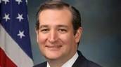Ted Cruz  (Republican)