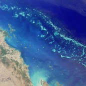 This is The Great Barrier Reef!