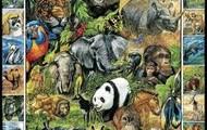 Especies de selva africana