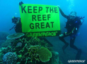 How Have We Humans Impacted The Great Barrier Reef?