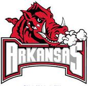 #1 Universtiy of Arkansas