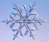 Snowflakes for the Storehouse & the Soul