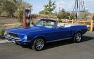 Randy's Blue Mustang