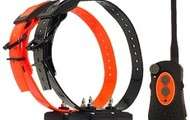 DT Systems Dog Training Collars